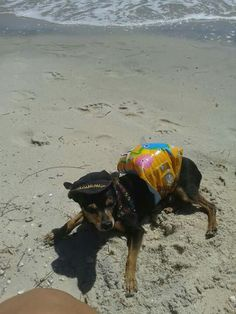 Paulo Zulu at the beach