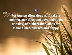 Aristotle Quote For swallow make summer - For one swallow does not make a summer, nor does one day; and so too one day, or a short time, does not make a man blessed and happy.  - #Aristotle _ #Aristotle, #Blessed, #Day, #For, #Greek, #Happy, #Make, #Man, #Nor, #Philosopher, #Popular_Author, #Short, #Summer, #Swallow, #Time, #Too Friends Quotes