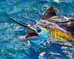 """Colorful Marlin painting print on canvas: Marlin off shore fishing print on canvas 16x20"""" by EquusFancy on Etsy"""