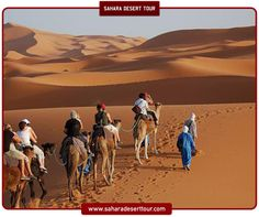 The journey never ends!  ***  #saharadeserttour #sahara #desert #adventure