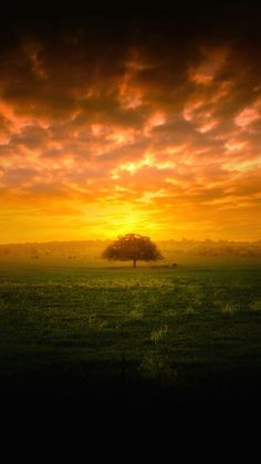 草原の夕焼け