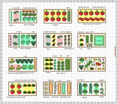 Garden Plan - 709 Abbot hill RD Companion Gardening, Window Plants, Head Of Lettuce, Small Tomatoes, Chinese Cabbage, Garden Types, Types Of Soil, Garden Soil, Zinnias