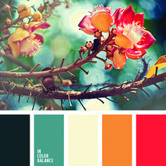 In Color Balance - Color Palette Colour Pallette, Color Palate, Colour Schemes, Color Combos, Color Patterns, Autumn Color Palette, Three Color Combinations, Design Seeds, Color Swatches