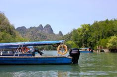 A Langkawi tour with kids - venturing into the mangroves