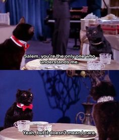 Sabrina the Teenage Witch! (Salem was the best) haha i sooo love this cat