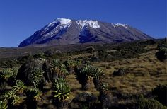 The Top 10 Climbs in the World. All offer something different and the views, whether at the foot, top, ascending or descending they take your breath away. Kilimanjaro Climb, Tanzania, Kenya, Mount Rainier, Trekking, Climbing, Skiing, Places To Visit, Africa