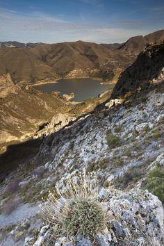 ✮ Sierra Nevada