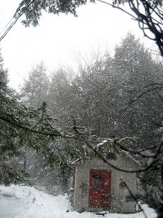 snow, softly falling