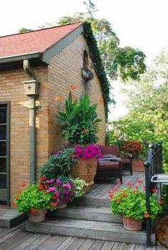 The best home garden