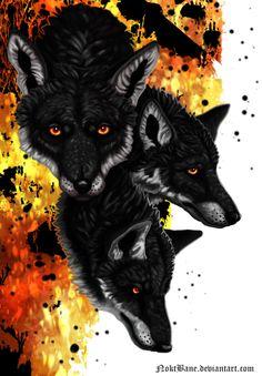 Tri Fox by NoktBane on DeviantArt