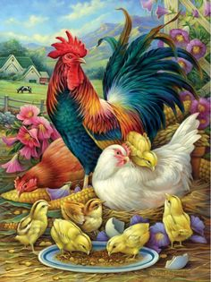 Rooster Painting, Rooster Art, Rooster Decor, Beautiful Chickens, Chicken Art, Chickens And Roosters, Hens And Chicks, Farm Animals, 1000 Piece Jigsaw Puzzles