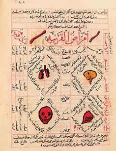 NATIONAL MUSEUM, DAMASCUS / BRIDGEMAN ART LIBRARY This page from a 14th-century copy of Avicenna's five-volume Canon of Medicine describes several internal organs, as well as the skull and bones. The Canon was a compilation of Greek and Islamic medical knowledge.