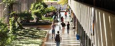 Ranking Folha de Universidades - Rankings - Ranking de Universidades    UnB - Universidade de Brasília
