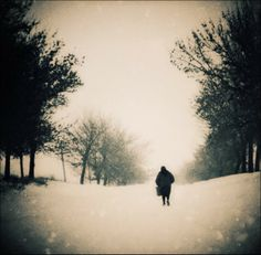 thumbs felicia simion 05 Beautiful photography by Felicia Simion