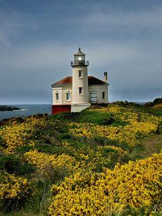 Coquille River Lighthouse, Oregon, USA-by mrsmoneytoo Lighthouse Pictures, Lighthouse Art, Oregon Coast, Bandon Oregon, Oregon Usa, Beautiful Places, Beautiful Pictures, Pintura Country, Oregon Travel