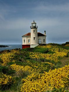 ~~Coquille River Lighthouse | Bandon, Oregon