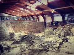 The Mammoth Site South Dakota. #mammoth #mamothsite #sd #southdakota