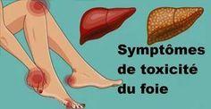11 Signes que votre foie ne fonctionne pas bien et que les toxines s'accumulent dans votre corps - Santé Nutrition