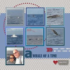 whale watching scrapbook layouts - Google Search
