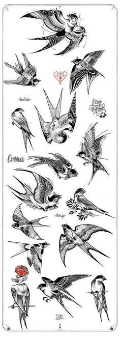 Swallow Tattoos – Exploring the Symbolic Meaning of Swallow Tattoo Designs Trendy Tattoos, New Tattoos, Body Art Tattoos, Sleeve Tattoos, Skull Tattoos, Hand Tattoos, Turtle Tattoos, Tribal Tattoos, David Hale Tattoo