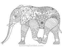 Free printable elephant adult coloring page. Download it in PDF format at http://coloringgarden.com/download/elephant-coloring-page/