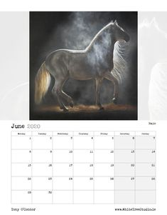 Tony O Connor 2020 Equine Art Calendar Limited Edition Art Calendar, Equine Art, Life Is Good, Moose Art, Sketches, Horses, Artist, Image, Beautiful