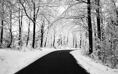 Winter Road Wallpaper Winter Nature Wallpapers in jpg format for