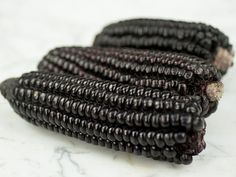 from Rare Seeds dot com  Kulli Black Incan Corn Seeds | Baker Creek Heirloom Seed Co