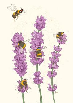 Flower Prints, Bird Prints, Lavender Aesthetic, Flower Aesthetic, Top Hats, Busy Bee, Bee On Flower, Flower Art, Wild Flowers