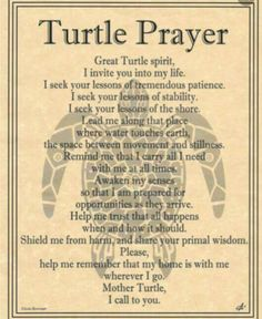 Turtle Prayer... from Demis book.