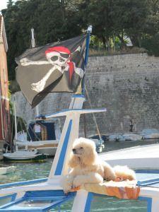 #Zadar Blonde at sunbathing :)