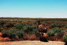 Aussie Overlanders - Mungo National Park