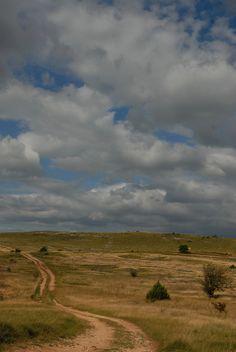 https://flic.kr/p/fr6qxk | Plateau du Larzac |   N'hésitez pas à visiter et liker ma page facebook ;-) Come visit and like my Fb page :)  www.facebook.com/seguretmichel