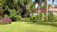 Southern California Gardening: Lawn Care for Fall