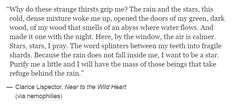 Clarice Lispector, Near to the Wild Heart Open Book, English Quotes, Keep In Mind, Wild Hearts, Me Quotes, Poetry, Writing, Sayings, Books