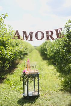 "wine cork ""AMORE"" sign // photo by Hello Love Photography // http://ruffledblog.com/italian-garden-party-inspiration"