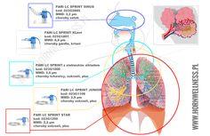 Jeśli stosujecie terapię inhalacyjną pierwszy raz i macie wątpliwości jakiego typu nebulizator zastosować - zapoznajcie się z naszym artykułem. http://www.hornwellness.pl/blog/wielkosc-czasteczki-aerozolu-inhalacyjnego-a-obszary-dzialania-leku.html #PARI #inhalacja #nebulizator