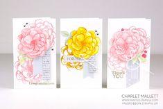 April 2019 Paper Pumpkin - Sentimental Rose - Charlet Mallett Stampin' Up! Label Shapes, Stampin Up Paper Pumpkin, Square Envelopes, Ink Pads, Stamping Up, Flower Cards, Craft Kits, Greeting Cards Handmade, Stampin Up Cards