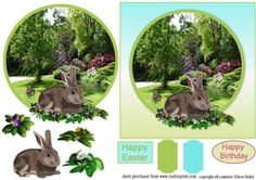 Easter Rabbit in spring on Craftsuprint - View Now!