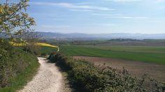 Tramo de #Pamplona a #PuenteLaReina. Precioso camino en esta época del año. No dejes que te lo cuenten y anímate a realizar el #CaminodeSantiago.  www.caminodesantiagoreservas.com