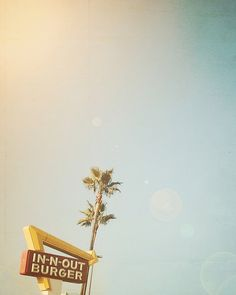 Palm Trees, California Photography, Food, Restaurant, Retro Inspired, fpoe, Sky, Blue, Green, Wall Decor - In  Out (8x10)