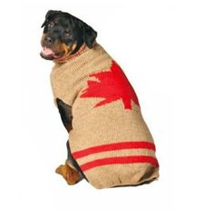 Chilly Dog Maple Leaf Dog Sweater, Large => To view further, visit now : Accessories for dog