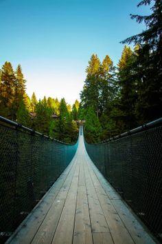 The Infinite Gallery : Capilano Suspension Bridge, Vancouver, Canada