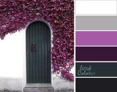 Дверь в Европу: Яркое и торжественнее сочетание, напоминающее о море и круглогодичном лете, являясь само по себе, комбинацией холодных оттенков, таких как ярко-белый, светло-серый (холодный серый), цвет орхидеи (холодный розовый), баклажановый, мокрый асфальт (холодный серый) и черно-серый цвет.