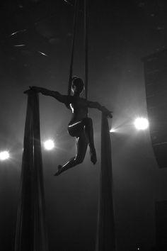 Aerial silk in Harpan, Iceland Aerial Acrobatics, Aerial Dance, Aerial Hoop, Aerial Arts, Aerial Silks, Pole Dance, Dance Art, Aerial Gymnastics, Circus Aesthetic
