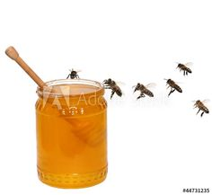 Photo about Honey jar and bees isolated on the white background. Image of food, liquid, drizzler - 33130309 Bee Images, Recipe Images, Jar, Stock Photos, Health, Honey Bees, Daily News, Highlights, Flowers