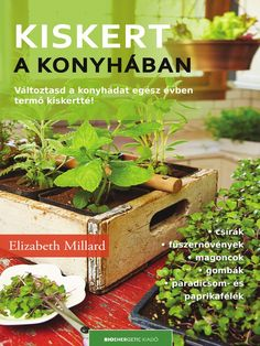 Indoor Kitchen Gardening: Turn your home into a year-round vegetable garden by Elizabeth Millard - How to grow veggies indoors! Indoor Kitchen Gardening: Turn your home into a year-round vegetable garden by Elizabeth Millard - How to grow veggies indoors! Growing Vegetables Indoors, Growing Microgreens, Herbs Indoors, Growing Herbs, Growing Sprouts, Indoor Vegetable Gardening, Container Gardening, Organic Gardening, Gardening Vegetables
