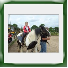 Enjoy a horse ride by lead rein on 'Bob' who will not be entering the Grand National anytime soon! Grand National, Horse Riding, Family Activities, Bob, Horses, Seasons, Gallery, Animals, Animales