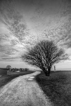 The lonely path - Pinned by Mak Khalaf Sibbarp Malmö Black and White WinterLandscapeMalmoMalmoeMalmöMirza BuljusmicMoodNatureScaniaSkåneSunsetSverigeSweden by mirzab