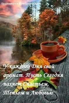 Nothing better than a nice hot cup of coffee on a fall day. October Country, Autumn Scenes, Tea Art, Fall Flowers, Nature Pictures, Autumn Leaves, Autumn Rain, Beautiful Images, Good Morning
